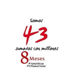 8 MESES