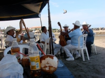 COCOS ON THE BEACH Y SON JAROCHO